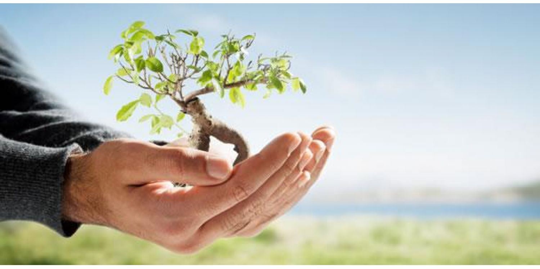 Ituporanguenses poderão solicitar licenciamentos ambientais no Município