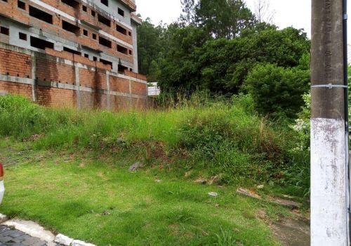 Administração pede colaboração da população para a limpeza de terrenos baldios