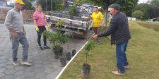 Administração realiza trabalhos de limpeza e pede apoio da populaçãome para embelezanto da cidade