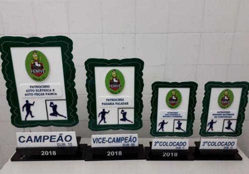 Equipes de base do Futsal se destacam em Copa Femive