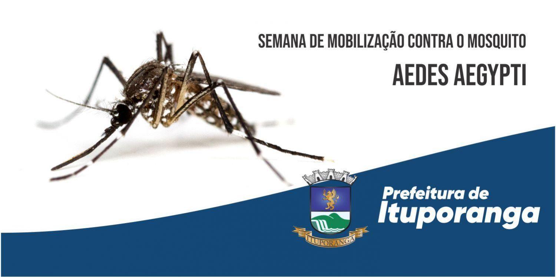Semana de Mobilização contra o Mosquito Aedes aegypti